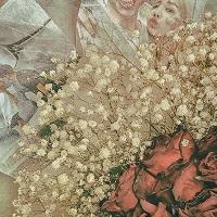 OVAN - CHRISTMAS ROSE ARTWORK